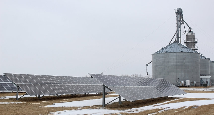 Three lanes of giant solar panels are immediately visible in front of the main office of Danner Farms. They angle south to best capture the route of the sun in the sky.