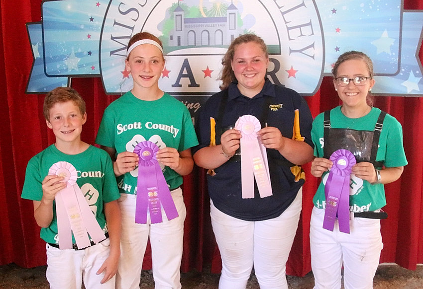 These 4-H'ers took home top Showmanship honors in the Dairy Show. From left: Sean Blake (Jr. Reserve), Sarah Blake (Jr. Champion), Maddy Costello (Sr. Reserve) and Kyrnan Liske-Rochholz (Sr. Champion).