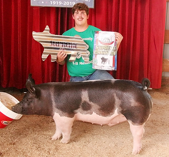 Joe Lilienthal showed the Supreme Overall Market Hog with this Champion Market Barrow.