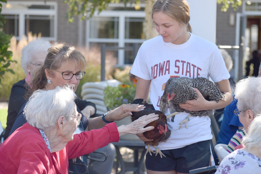Chloe Engelbrecht introduces Grand Haven residents to chickens that will roam the courtyard of the Eldridge senior home through warmer months.