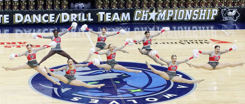 North Scott's Silver Shakers were flying high at the State Dance competition in Des Moines, and brought home a third-place finish with their Class XII Pom routine. From left: Carolyn Keppy, Madylin Gabrielson, Megan Sacia, Sydney Westendorf, Abby Lundvall, Olivia Wessel,  Hannah Bain and Annika Foit.