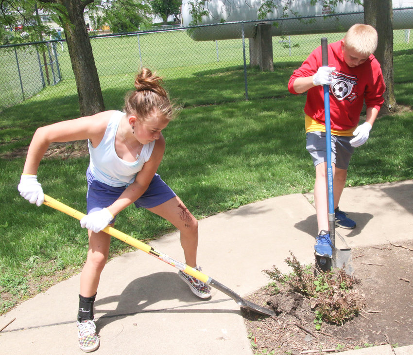 Jocee Powell and Colin Engelbrecht dig out a bush.