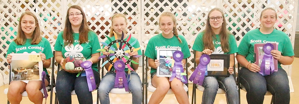 Earning Champion ribbons for their Home Improvement projects were (l-r): Grace Hamann, Emma Bedeian, Amanda Nelson, Caleigh Schlichte, Addison Schuett and Raven McCabe.