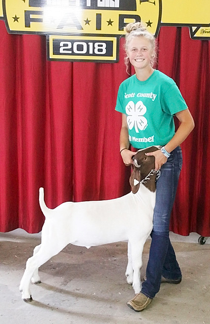 Kamryn Meyer showed the Champion Meat Goat Wether.