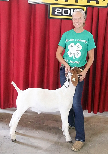 Makenna Buesing showed the Reserve Champion Meat Goat Wether.