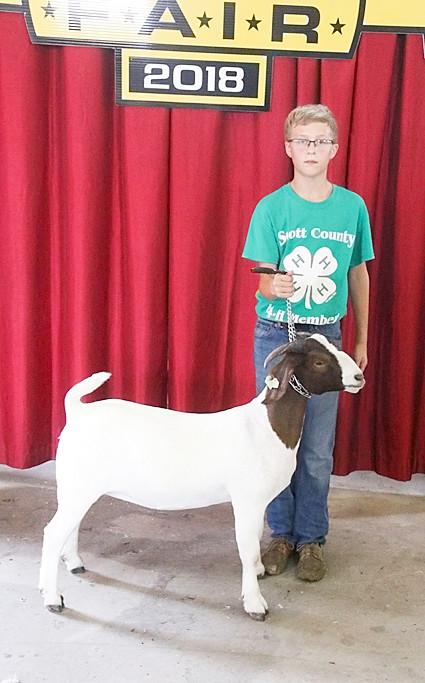 Caden Meyer showed the Champion Meat Goat Doe with this Junior Doe.