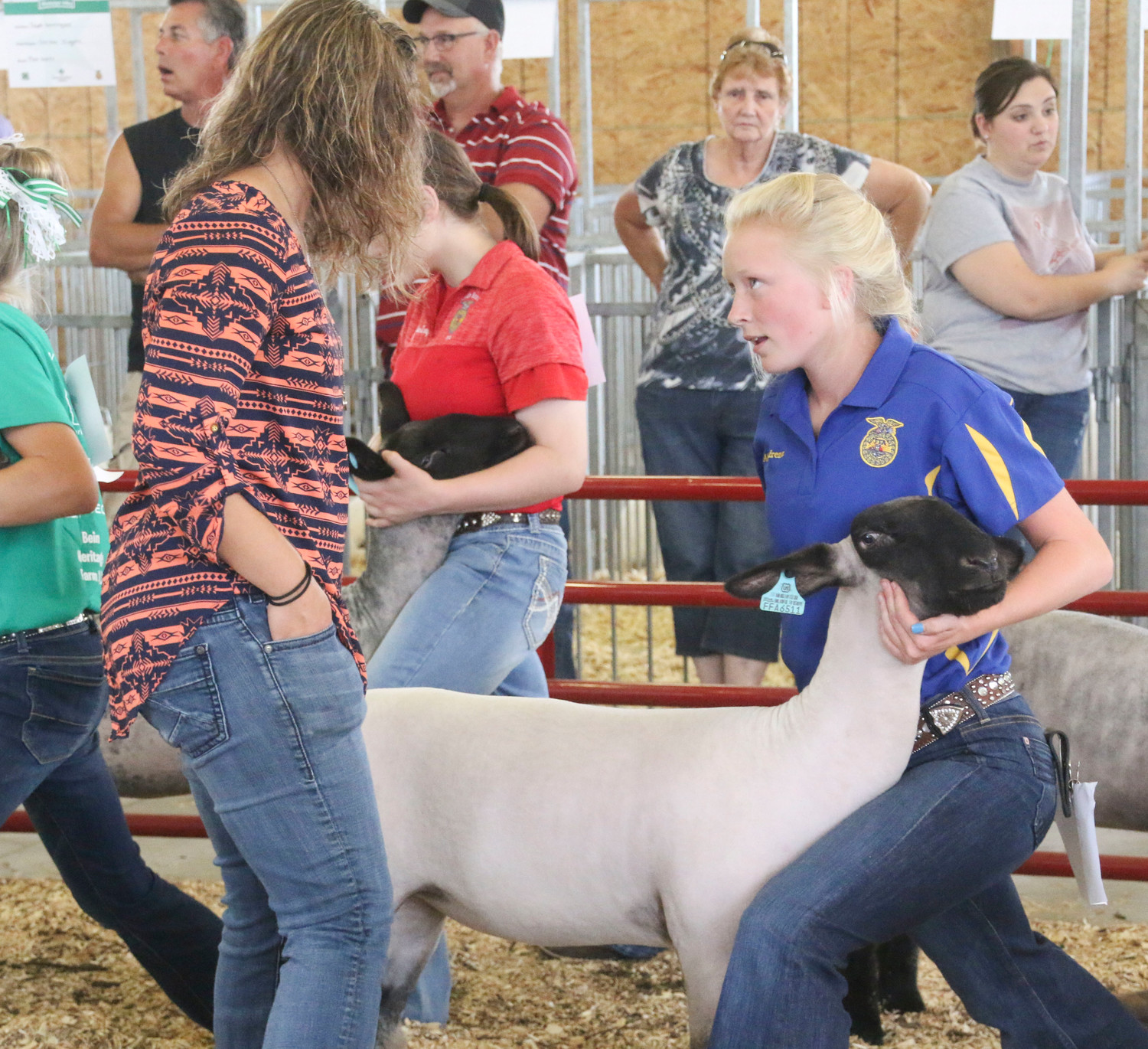Abbi Lafrenz talks with judge Ashley Wiebe during the Sheep show.
