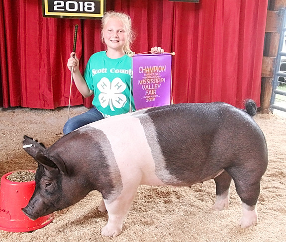 Brooklyn Flenker showed the Champion Market Gilt, which stood Third Overall in the final drive.
