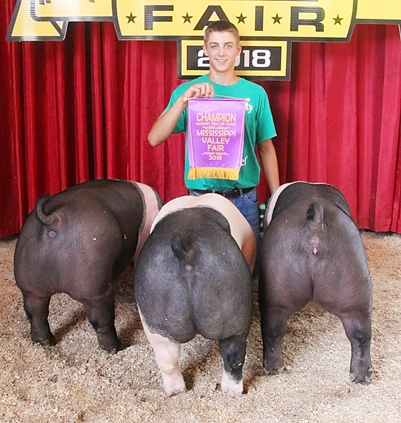 Lane Vander Heiden showed the Champion Market Pen, which included the Reserve Champion Commercial Gilt.