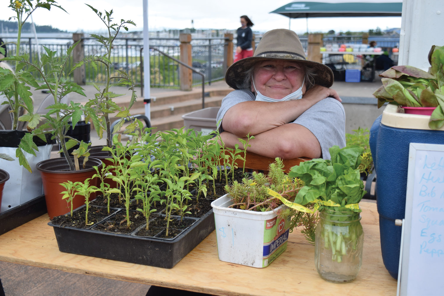 "Vendor Donna Read sells homegrown plants at the Blaine Farmers Market last Saturday, June 27. The weekly event recently added a flea market, which takes place the last Saturday of each month. Read, who sells her plants and produce every week at the market, said, ""This is my work and my social life."" She added that the vendors all support each other and she's grateful that the city still allows the weekly event."