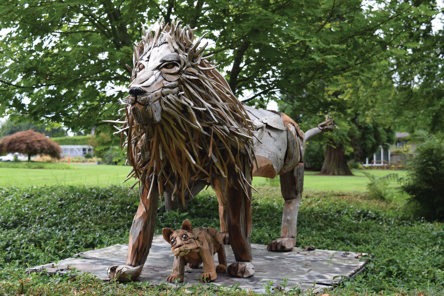 "A driftwood sculpture, titled ""Lion & Cub,"" created by Joe Treat."
