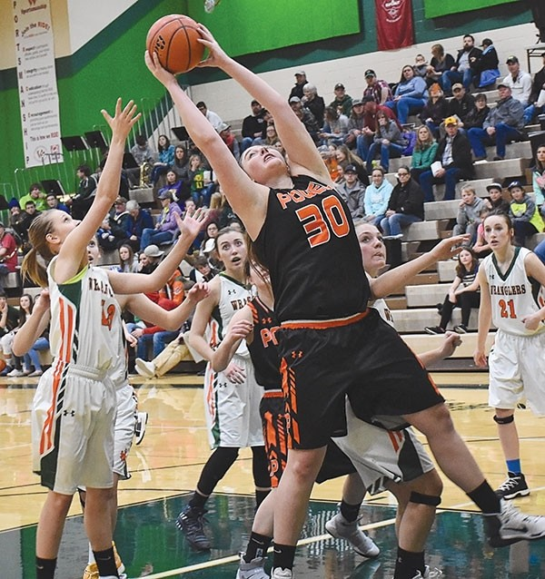 Powell High School junior Rachel Bonander grabs one of her 15 rebounds during a Friday game against the Lady Wranglers in Pinedale.