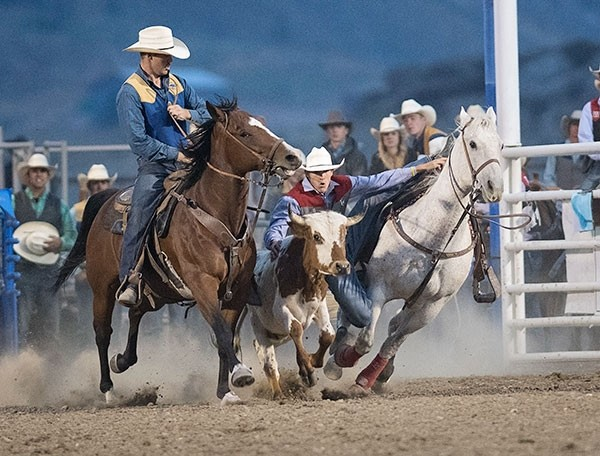 Northwest sophomore Bubba Boots competes in the steer wrestling portion of the Trapper Rodeo Sept. 8 at Cody Stampede Park. Boots currently ranks third in the region for steer wrestling and is in first for all-around.