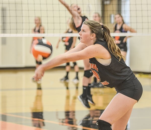 Lady Panther Devon Curtis bumps the ball during a recent practice at Powell High School. The team opens their season this weekend at the Riverton Invitational.