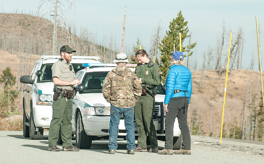 A pair of Yellowstone National Park visitors make a report to rangers on Saturday morning, about a man who reportedly fired a shotgun at wolves near Sedge Bay.