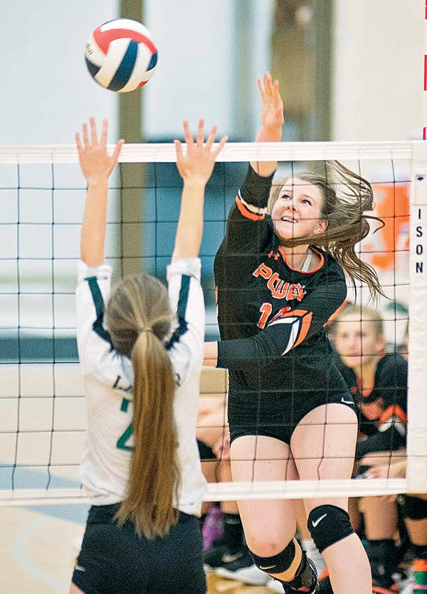 Powell's Devon Curtis powers a shot past a Lander defender Thursday at the Powell High School gym. The Lady Panthers won the match in four sets 14-25, 25-16, 25-22, 25-23 to lock up the quadrant title.