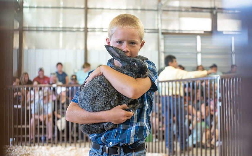 Tucker Muecke holds his rabbit during last year's Junior Livestock Sale. Dozens of local youth will sell their rabbits, hogs, lambs, goats and steers at the annual sale on Saturday afternoon.