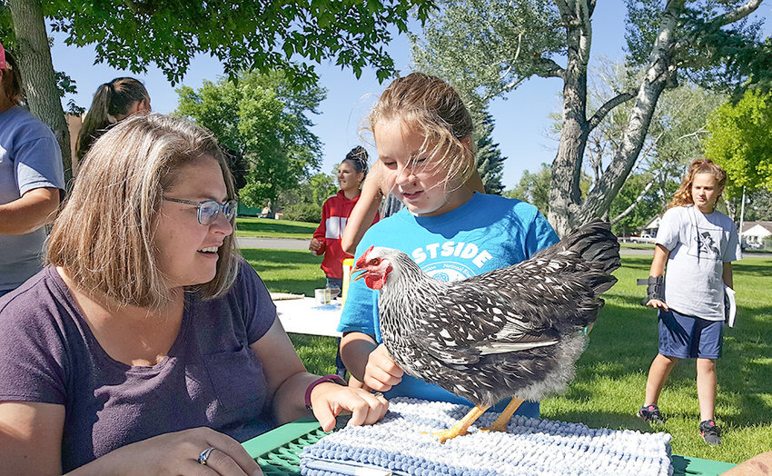 Claudia Preator talks about her Wyandotte chicken during a recent practice poultry showmanship session at Washington Park, while her mother, Cortney Miner Preator, looks on at left.