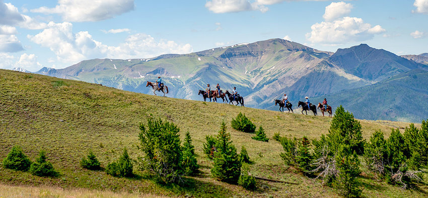 A group of Wyoming Back Country Horsemen ride to the summit of Windy Mountain during a day of fun and camaraderie at their 22nd annual state rendezvous in Sunlight Basin. More than 100 volunteers for the trail maintenance organization camped at the Sunlight Ranger Station, hosted by the Shoshone Back Country Horsemen, largely consisting of Park County residents.