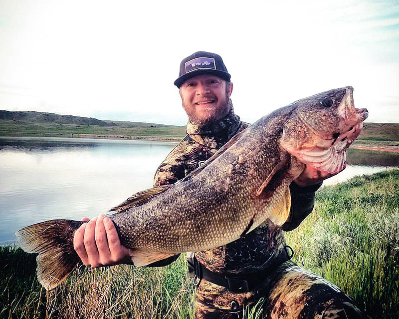 Christopher Sheets, a former Powell resident, holds his 15-plus pound walleye harvested from Lake DeSmet, near Buffalo. Sheets' trophy is a new world record for polespear fishing.