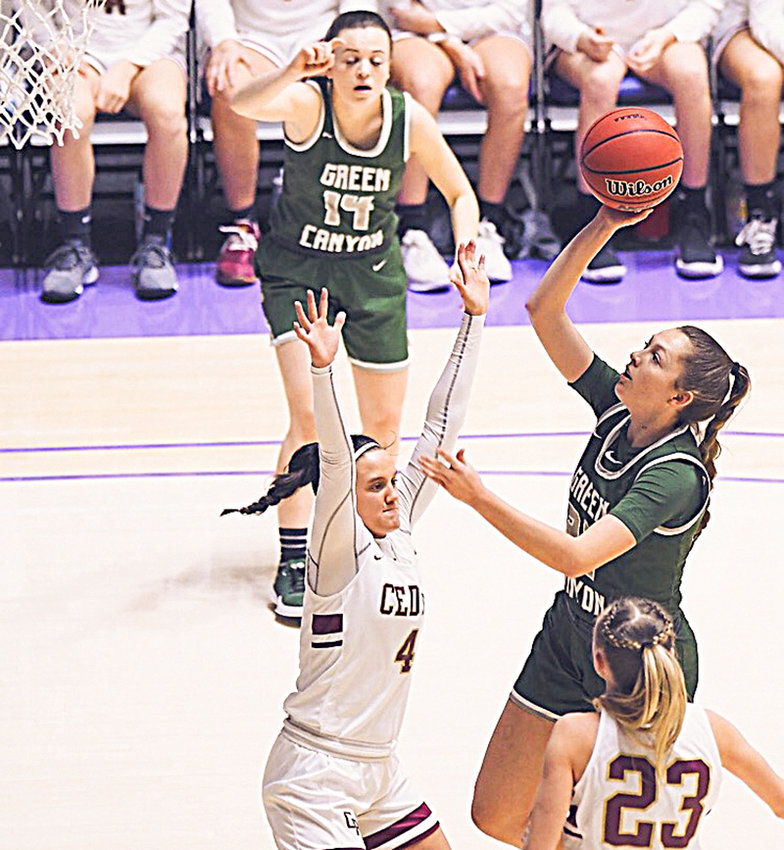 Shante Falslev, 5-foot, 11-inch, guard from Green Canyon High School in North Logan, Utah, will join the NWC women's basketball team this fall.