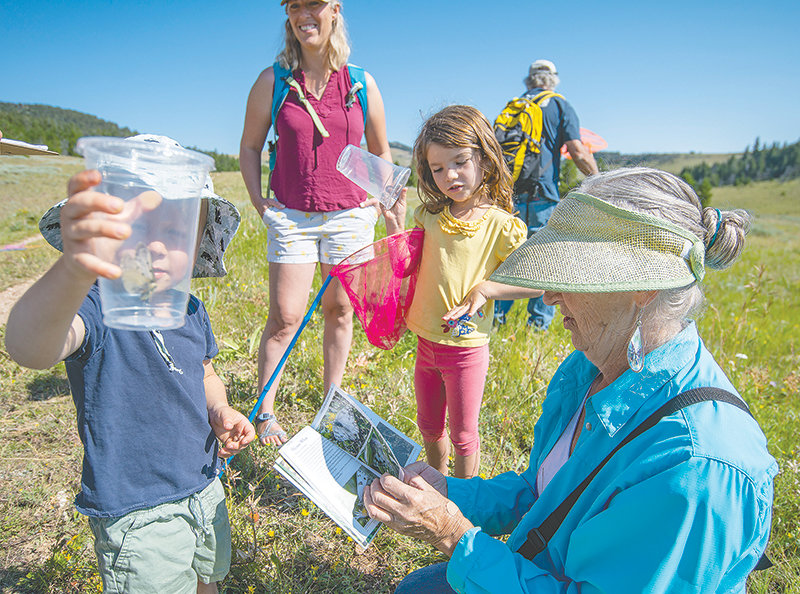 University of Wyoming Extension agent and horticulturist Bobbie Holder looks to identify a butterfly caught by Jarett Peters while his mother, Lynnsey Peters and sister, Kayleigh, look on. More than 500 butterflies were collected during the Aug. 1 event.