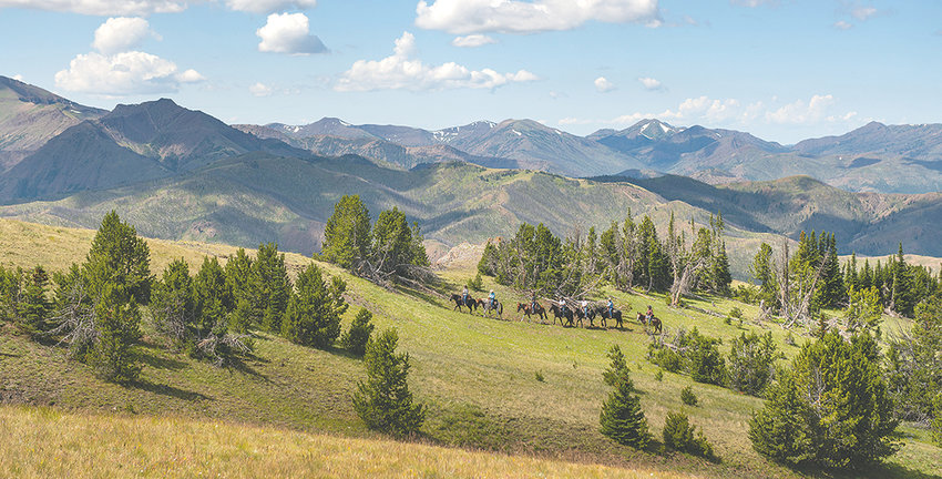 A crew with the Back Country Horsemen rides through the North Zone of the Shoshone National Forest, south of the Montana border, in 2019. Forest officials are accepting comments from members of the public for a travel management plan for motorized vehicles in the 2.5 million acre forest.