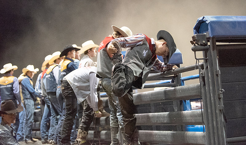 Bruin Bradshaw stretches out behind the chutes before the first section of bull riding last month during the Trapper Stampede Rodeo in Cody. The men's rodeo team has been on a roll as of late.
