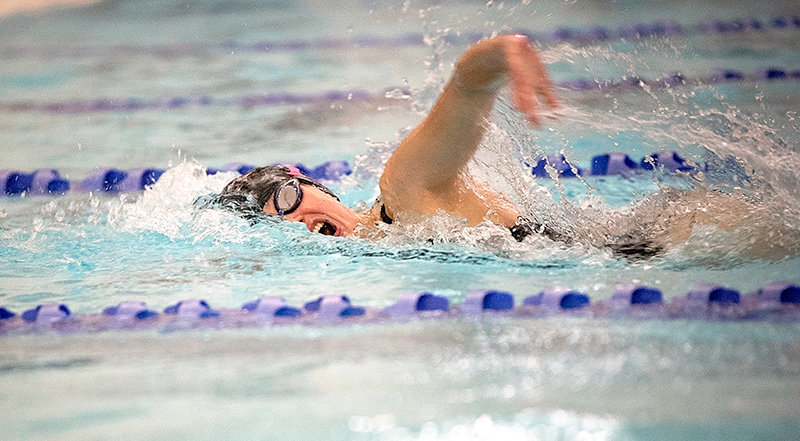 Elizabeth Liggett swims the opening leg of the 200 freestyle relay during the home triangular earlier this month at Powell Aquatic Center. She won the event at the Class 3A West Conference Meet in Lander over the weekend.