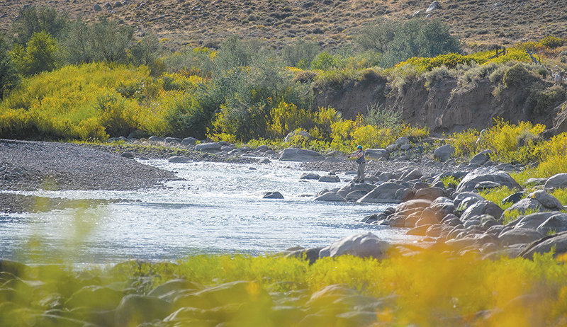 A fly fisherman tries his luck from the banks of the Clarks Fork of the Yellowstone River as it flows through the Beartooth Ranch, a property currently in the hands of the Office of State Lands and Investments.