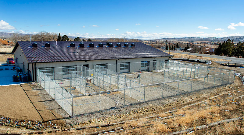 The new Park County Animal Shelter, located off the Greybull highway near the Cody KOA, will hold its grand opening Saturday. The turnouts for dogs allow them ample opportunity to exercise while waiting for their fur-ever homes.