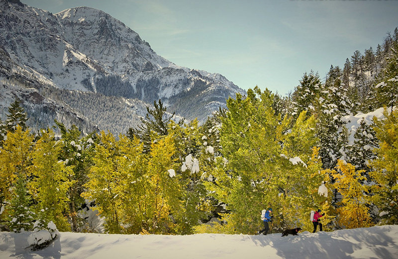 The Park County Travel Council is seeking images from local photographers and videographers — such as this shot of cross country skiers enjoying an outing on the South Fork west of Cody — that promote the area as a travel destination.
