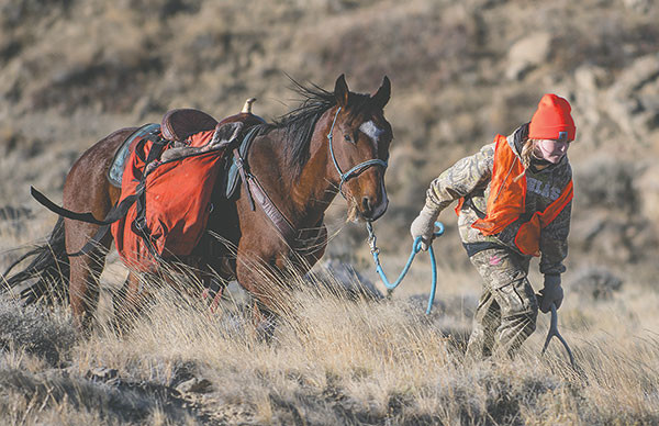 Shelby Fagan leads her horse, Socks, back to the truck with panniers full of a harvested mule deer doe.