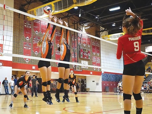 Powell High School senior Brook Sweet (No. 1) and junior Jazlyn Haney (No. 11) attempt to block a spike from a Big Piney opponent during Saturday's game at the Riverton Invitational.  In the background is senior Jordan Walsh (left) and junior Hartly Thorington (right).
