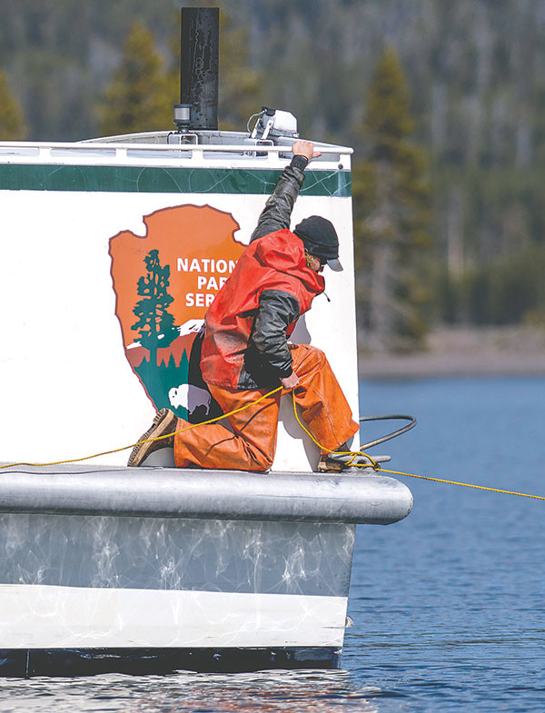 A Yellowstone park fisheries biologist works from the deck of the Freedom, a WWII vintage vessel turned into a fishing boat, to rid the lake of a large log that could damage boats.