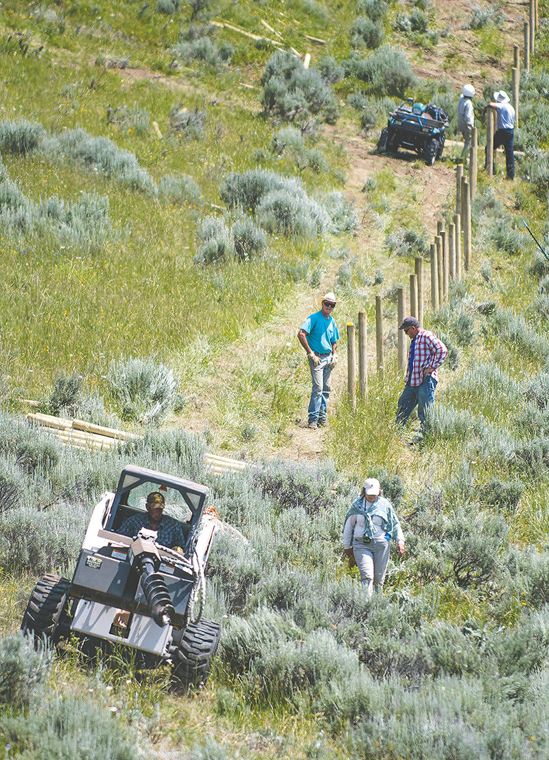 Dave Sweet, conservation project leader for the East Yellowstone chapter of Trout Unlimited, operates a Bobcat to dig post holes while volunteers help erect a fence to protect cutthroat trout in Soldier Creek.