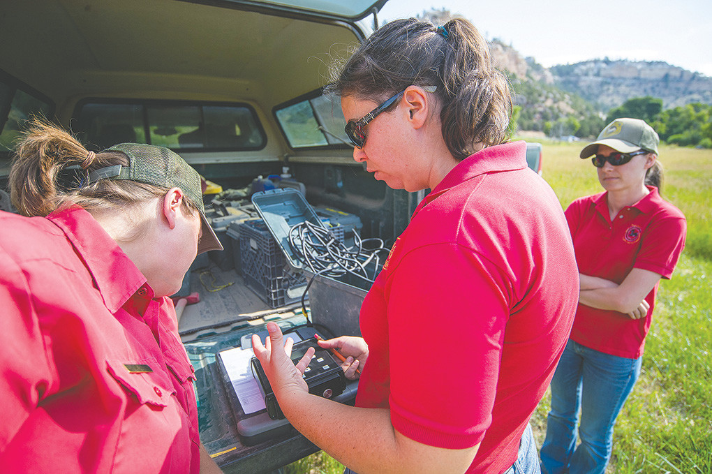 Wyoming Game and Fish Department biologist Laura Beard (center) teaches Leslie Schreiber, Greybull area biologist (left) and Nichole Bjornlie, nongame mammal biologist, (right) how to program and set up specialized recording devices for listening to bat echolocating — something that can't be heard with human ears.