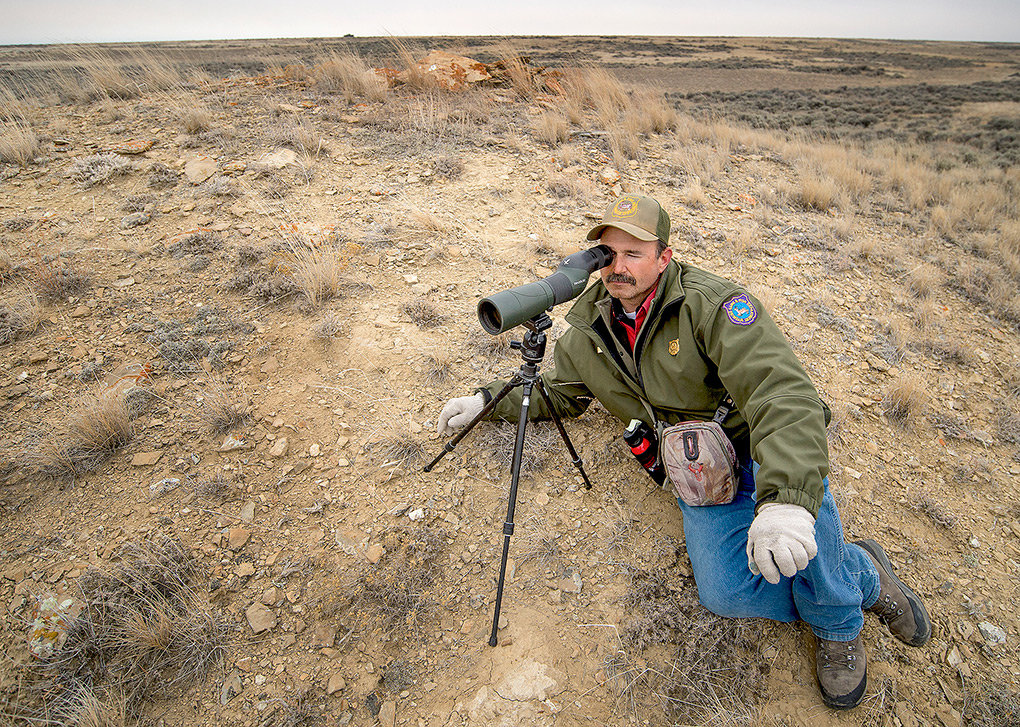 Chris Queen, Powell area game warden for the Wyoming Game and Fish Department, counts sage grouse on an isolated lek in Elk Basin.