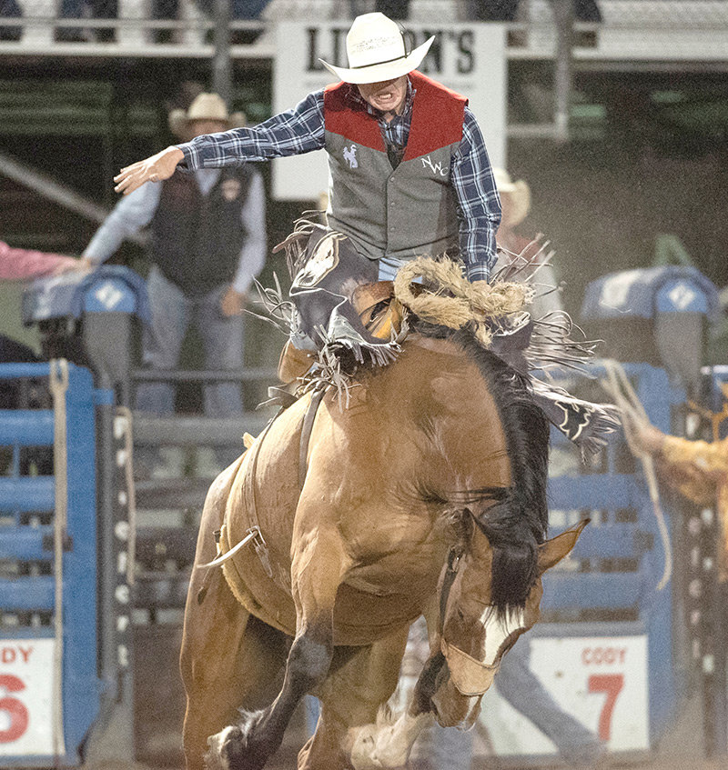 NWC Trapper Calvin Shaffer competes in saddle bronc riding last September at the Trapper Stampede in Cody. Shaffer finished first in saddle bronc at last weekend's MCC Spring Rodeo in Montana.