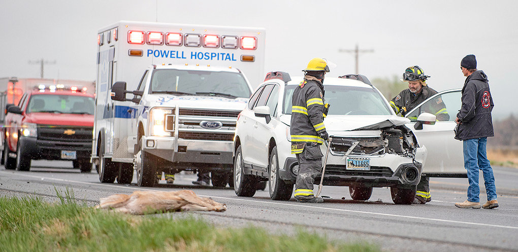 As members of the Powell Volunteer Fire Department deal with the damaged vehicle, a dead deer lies alongside U.S. Highway 14-A on May 20, near Road 12. State data indicates that the stretch between Powell and Cody is one of the worst in Wyoming for wildlife collisions. The driver of this vehicle was taken to the hospital for treatment before being released.