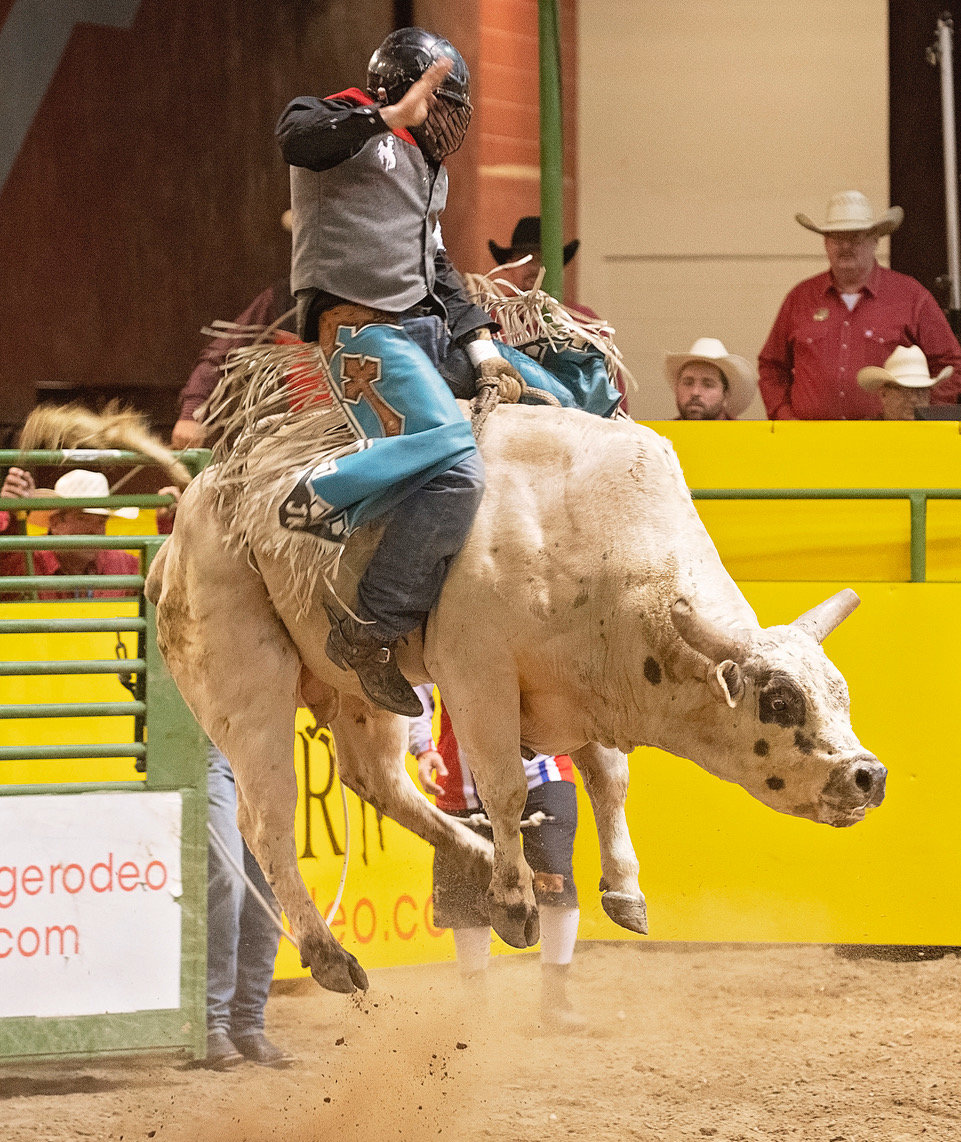 NWC rodeo team member Justin Ketzenberg hangs on to Hot Rooster during Sunday's opening day of the CNFR; Ketzenberg was thrown after a 7.91 second ride.
