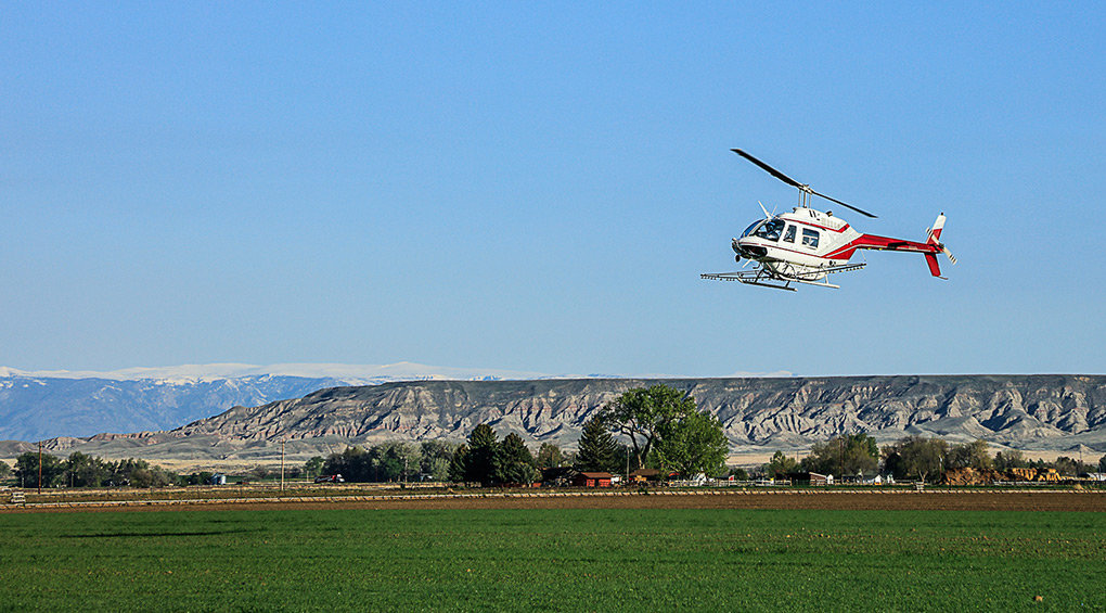 A helicopter from Sky Aviation in Worland flies over a Powell area field earlier this month to deploy herbicides. While working in the Willwood area, the company accidentally deployed herbicides on properties surrounding the fields the helicopter was targeting, causing damage.