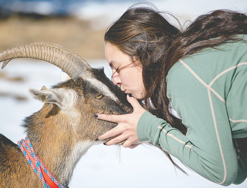 Desarae Starck plants a kiss on Summit, one of five pack goats the Starck family uses on hiking and hunting trips. Thanks to imprinting at birth and continued bonding, the goats follow the Starcks where ever they go and know several commands and whistles.