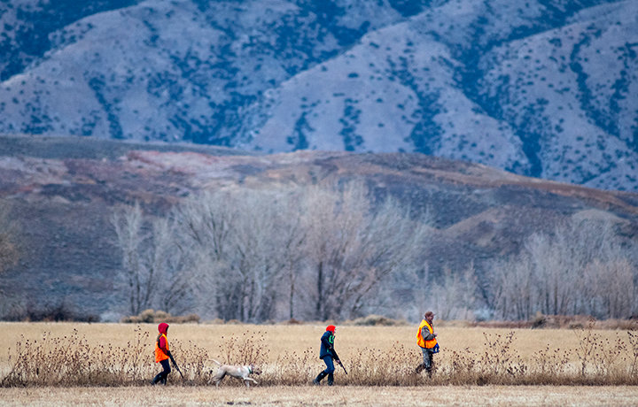 Mike Power and his twin sons, Dylan and Aiden, hunt near agricultural fields at Yellowtail Wildlife Habitat Management Area. About 900 acres of the 19,000-acre state managed property are farmed, with a significant amount left standing for wildlife to browse.