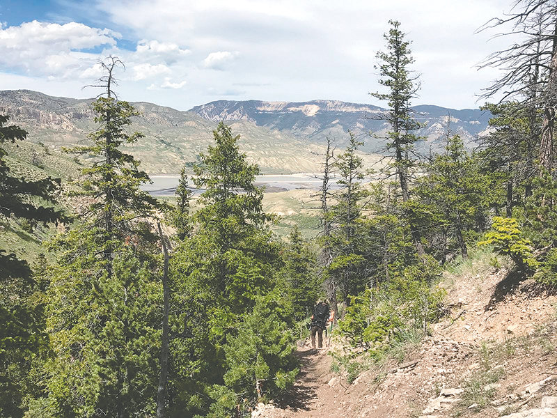 A hiker moves through a wooded section of Sheep Mountain, west of Cody. The more than 1,820 acre property, currently owned by The Nature Conservancy, is in the works to be sold to the Bureau of Land Management before the end of the year.