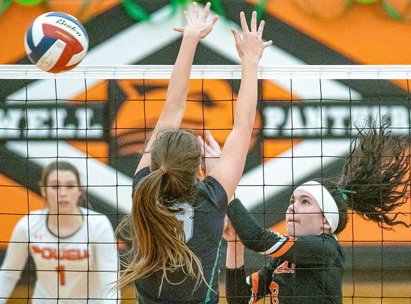 Senior Mattie Larsen hits a ball over the net in Powell's meeting with Lander Valley. The Panthers dropped the contest in three sets and fell in the following match to Worland, bringing the team record to 6-9.