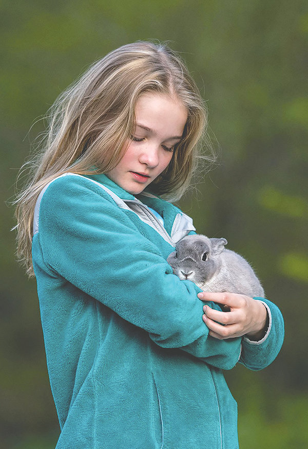 A virus found in eight states, including Wyoming, can be transferred to all rabbit species, according to state officials. Officials have been actively working with agricultural agencies due to worries the virus could spread at events like county fair rabbit shows. Amber Davis, above, holds her pet, Bun Bun, which she has had for several years. The hard-to-kill virus is only lethal to rabbits, but a decline in wild rabbits can hurt predators in the ecosystem.
