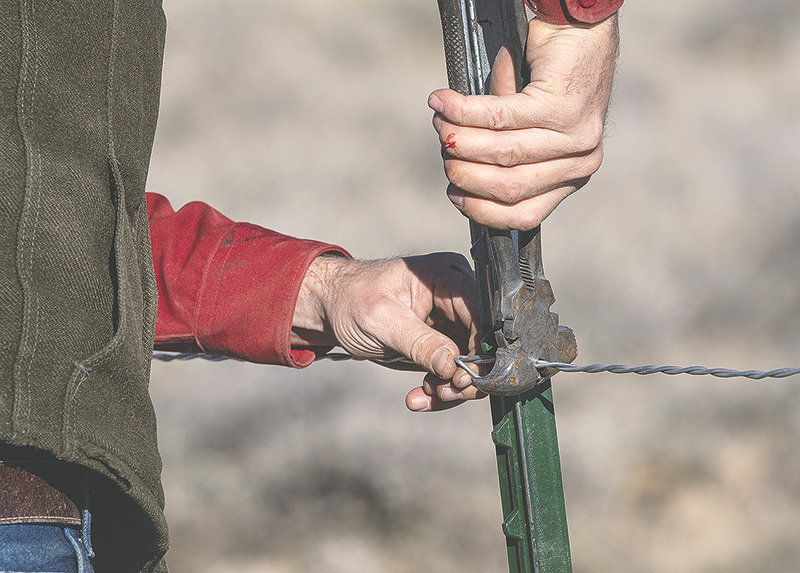Tony Mong attaches a strand of smooth wire to a metal fence pole. The fence was made more wildlife-friendly.