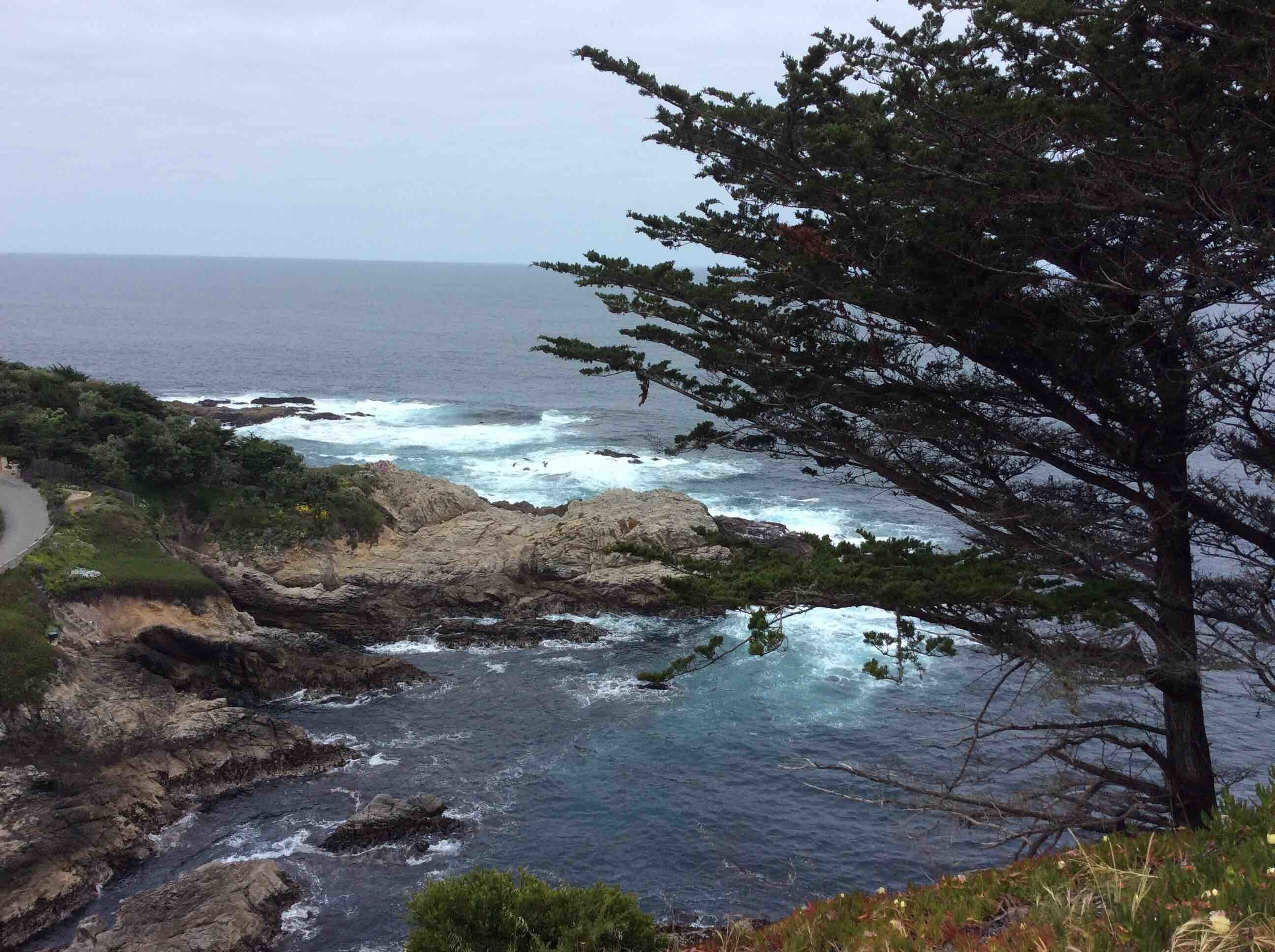 17-Mile Drive offers plenty of picturesque spots.
