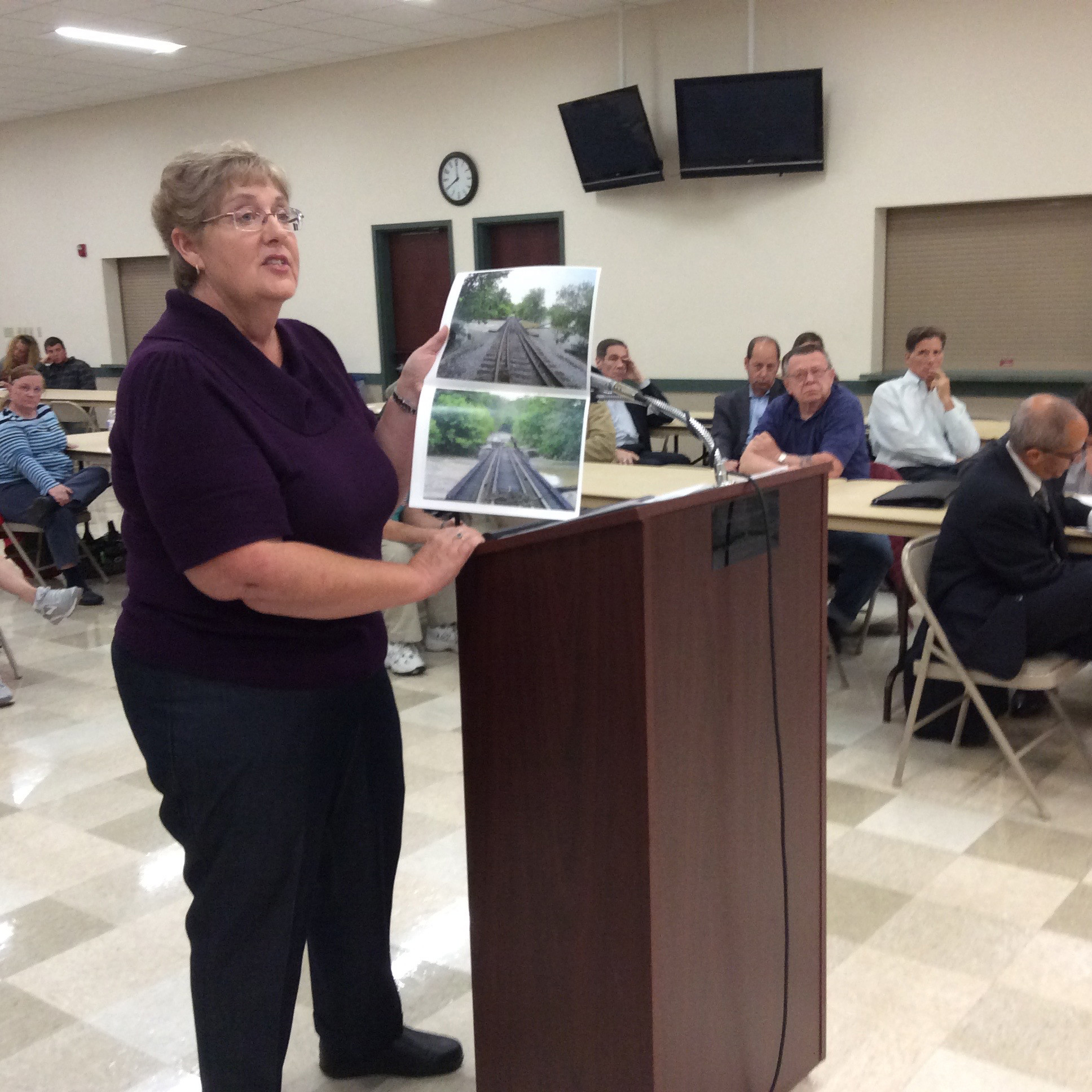 Resident Marjie Hartz believes that flooding from stormwater runoff will get worse if UPS is allowed to build its hub in Lower Swatara Township.